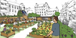 ​Urban farms to adress heat islands