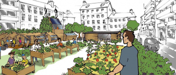 Urban farms to adress heat islands