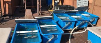 ENGIE Lab CRIGEN teste les biopolymères marins contre le fouling