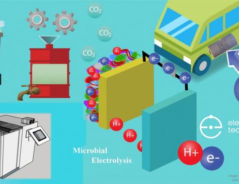 Electro-Active : réduire déchets alimentaires et pollution en produisant de l'énergie propre