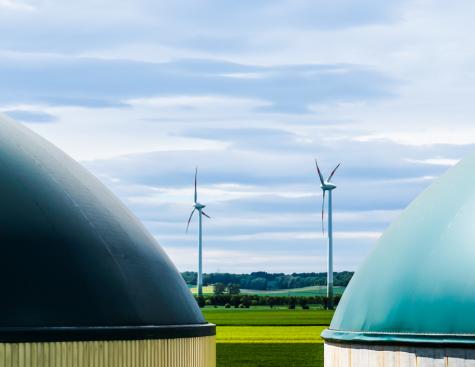 La recherche, un accélérateur nécessaire pour aller vers la neutralité carbone