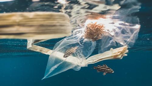 Quatre innovations pour nettoyer les océans, mers et rivières des plastiques