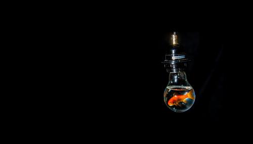 Ces innovations dans les renouvelables qui ont l'air de poissons d'avril (mais n'en sont pas)
