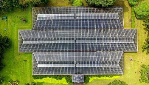 Synergie renouvelable : pour des opérations de production de nouvelles énergies