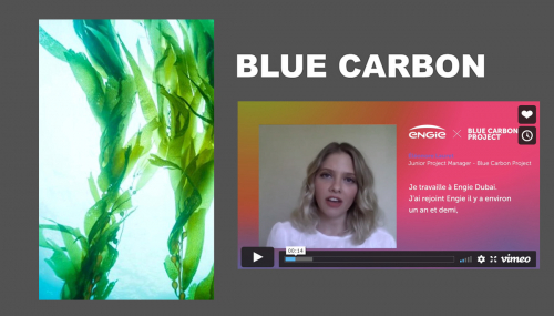 [STARTUP STORY] Blue Carbon