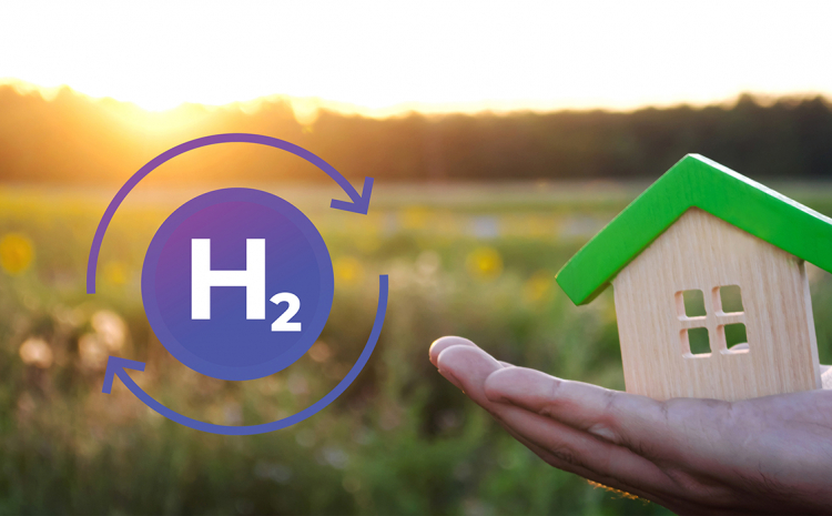 Home, Sweet Hydrogen Home: when H2 invests in domestic networks