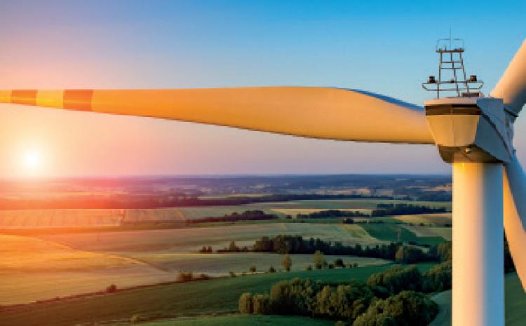 Vers une agriculture neutre en émissions