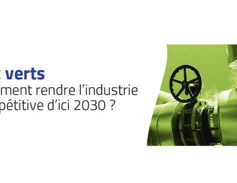 Gaz verts : comment rendre l'industrie compétitive d'ici 2030 ?
