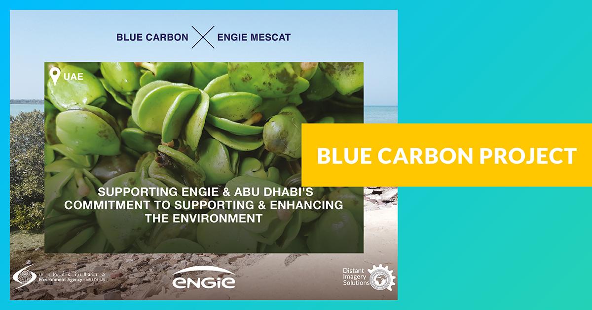 Blue Carbon Project (Projet Carbone Bleu)