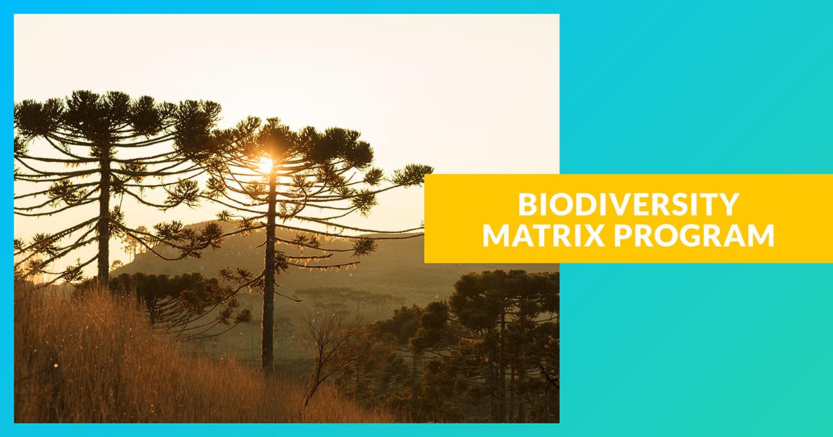 Matrice de la biodiversité